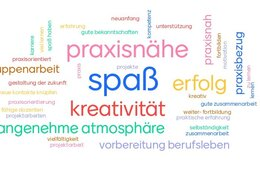 Wordwolke zu Studienerwartung